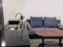 1 սենյականոց վարձով բնակարան Բաղրամյան պողոտայում, 1ին հարկ