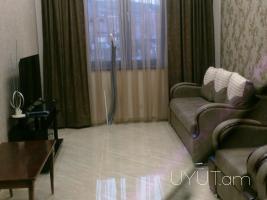 2 սենյականոց բնակարան Սայաթ-Նովայի պողոտայում, 8րդ հարկ